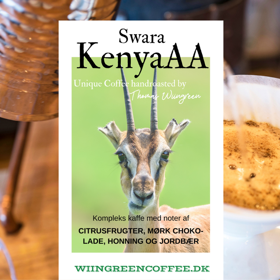 Swara AA, Kenya, friskristet kaffe